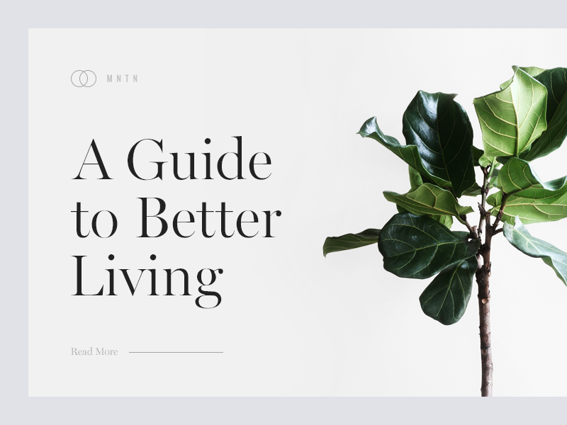 A Guide to Better Living clean lifestyle minimal plant munich typography type
