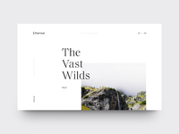 The Vast Wilds