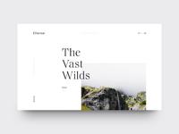 The Vast Wilds