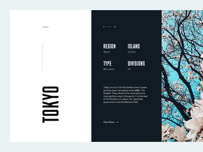 Tokyo tokyo grid layout editorial typography type flowers sky mountains minimal clean munich