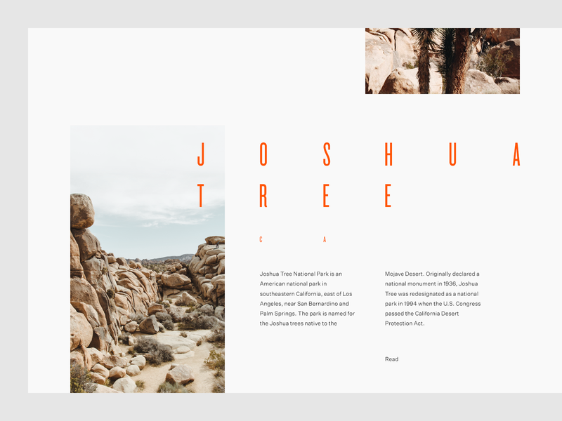 Joshua Tree desert park grid layout editorial typography type sky minimal clean munich