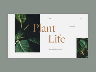 Plant Life animation nature green typography type life plant logo minimal clean munich