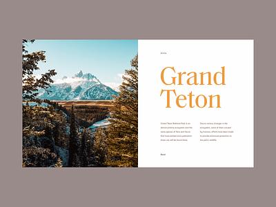 Grand Teton trees sky national green snow park mountain minimal clean munich