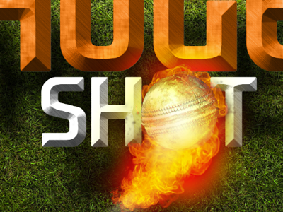 Shot shot cricket