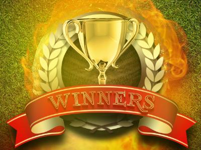 Winners win won cricket cup trophy