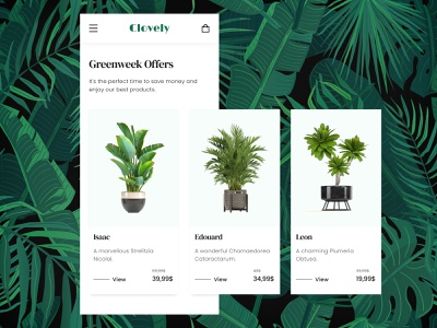 Daily UI #036 - Special Offer special offer plants dailyui 036 daily ui dailyui