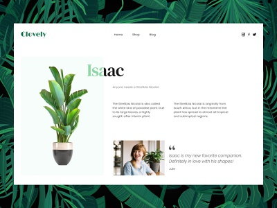 Daily UI #039 - Testimonials plants webdesign daily ui 039 daily ui dailyui