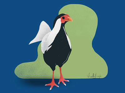 It's a bird. 🐓 gal shir illustrator illustration digital art cluck avian apple ipad ipad4 procreate covıd19 corona chicken bird birds
