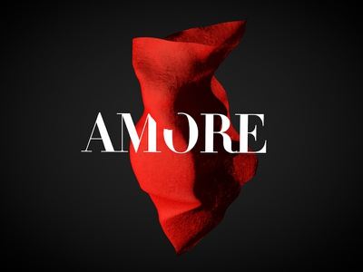 AMORE BALLET 3d inspiration typography vrn-dribbble-sd ballet identity poster