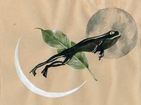Frog Flight