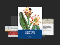 Concept - Scientific American Redesign