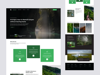 National Park Presentation 2x national park park nature website design website concept web ui  ux ui design