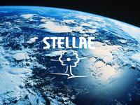 Stellae_logo minimal icon vector typography logo