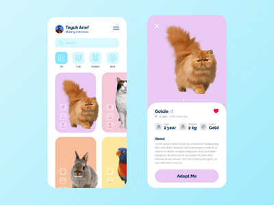 Pet Adoption App idea inspiration design interface visual adoption pet app web mobile ux ui