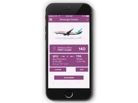 Caribbean Airlines Passenger Details Screen