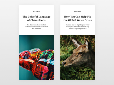Articles for the Blog typography white responsive articles blog app mobile minimal