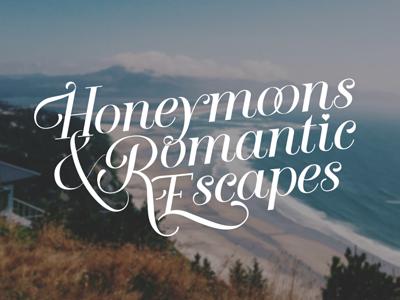Honeymoon Logo logo typography script