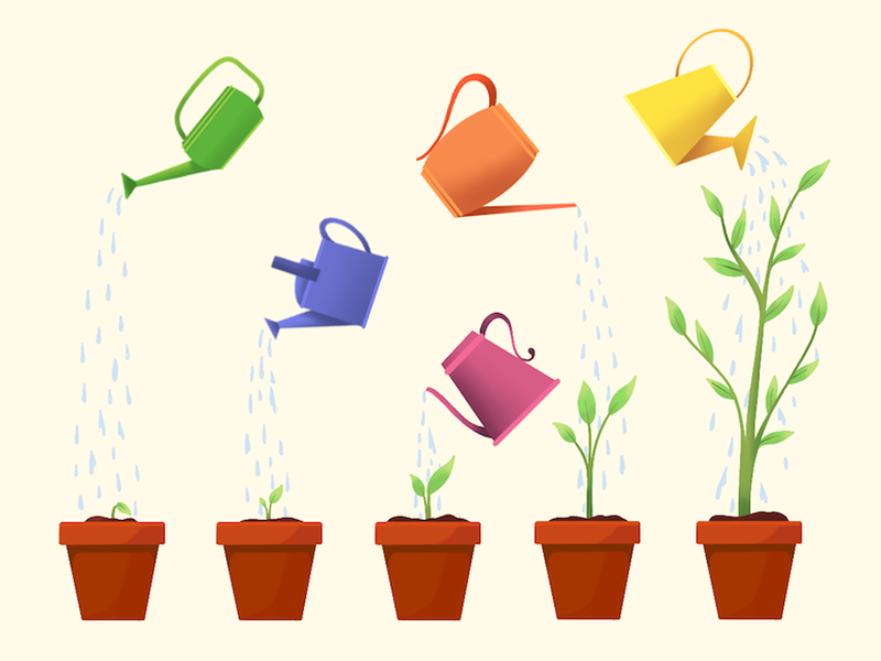 5 tips to increase donations on your website blog matrushka mx ilustración draw illustration