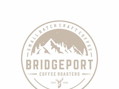 bridgeport icon vector design logo