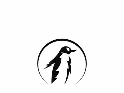 penguin brand identity logo illustration web ux logo