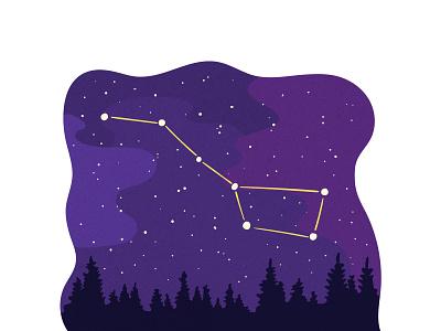 Night Sky purple vector editorial digital illustration vector illustration flat illustration constellations stars forest sky night sky