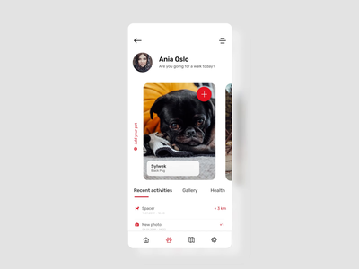 PetWise - Mobile App animation petwise pet stepwise dog animal application petfinder finder lost mobile design ui ux uidesign uxdesign lovedog googlecloud map ios