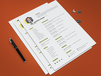 Professional RESUME/CV Design