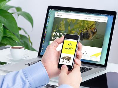 Pollinating flies brand visual design ux ui web pollinating agro flies