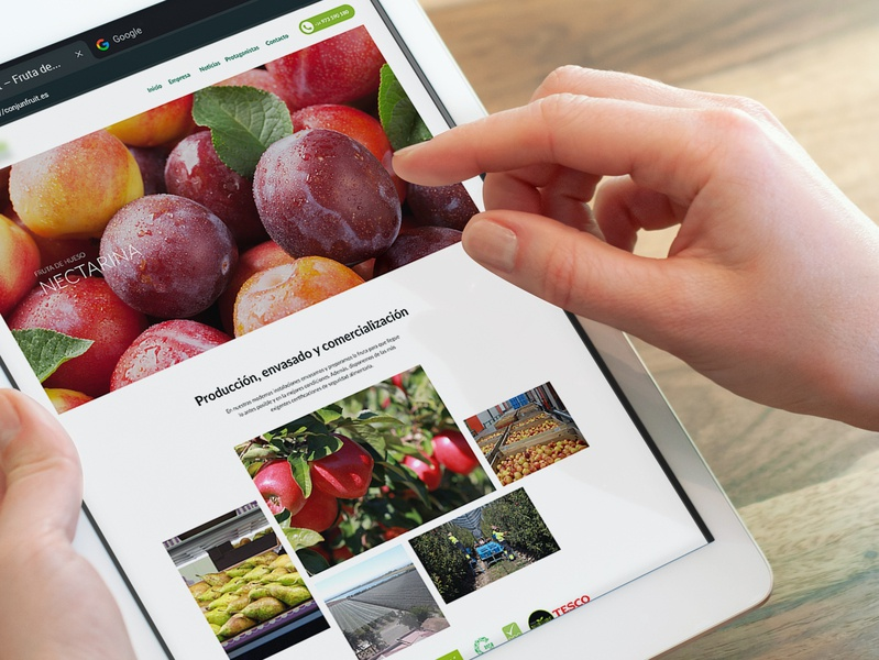 Fruits & Seeds webdesign agriculture web ux design ui agro