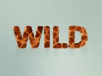 Wild Types