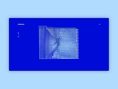 Corals Interaction typography website ux 3d design interaction animation clean c4d