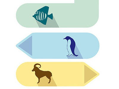 Colourful Zoo Brand Identity - Icons and Logos