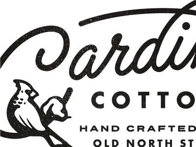 Cardinal Cotton nc matthew cook texture north carolina cotton cardinal script typography