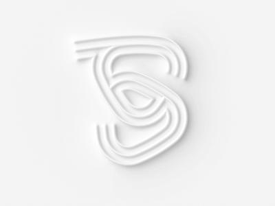 36 days of type S graphic design illustration concept design lettering typography 36 days of type 36daysoftype