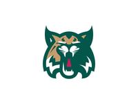 Ohio University Concept Version 2 logos logo identity illustration illustrator branding ohion university ohio bobcats