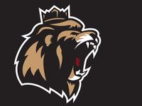 Lion Updates