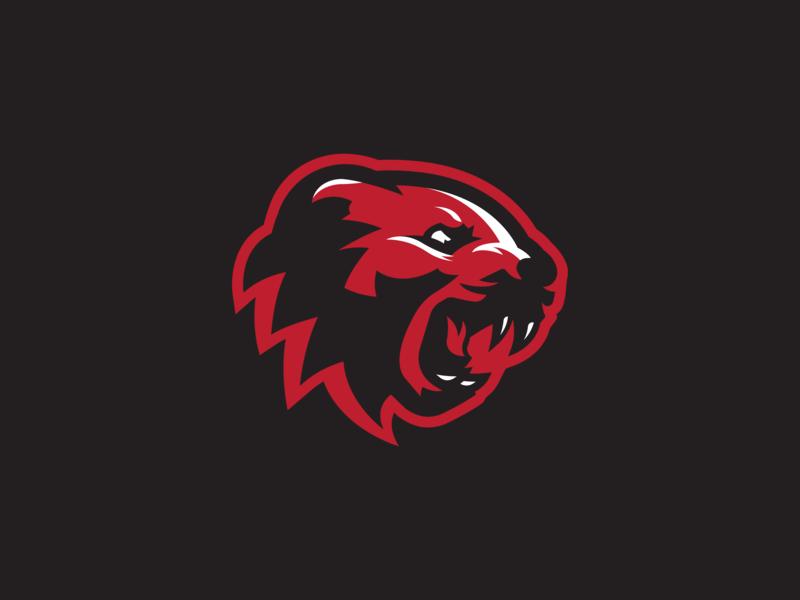 Cincinnati Bearcats Concept 3 By Sean Mccarthy Dribbble Dribbble