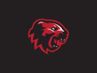 Cincinnati Bearcats Concept 3