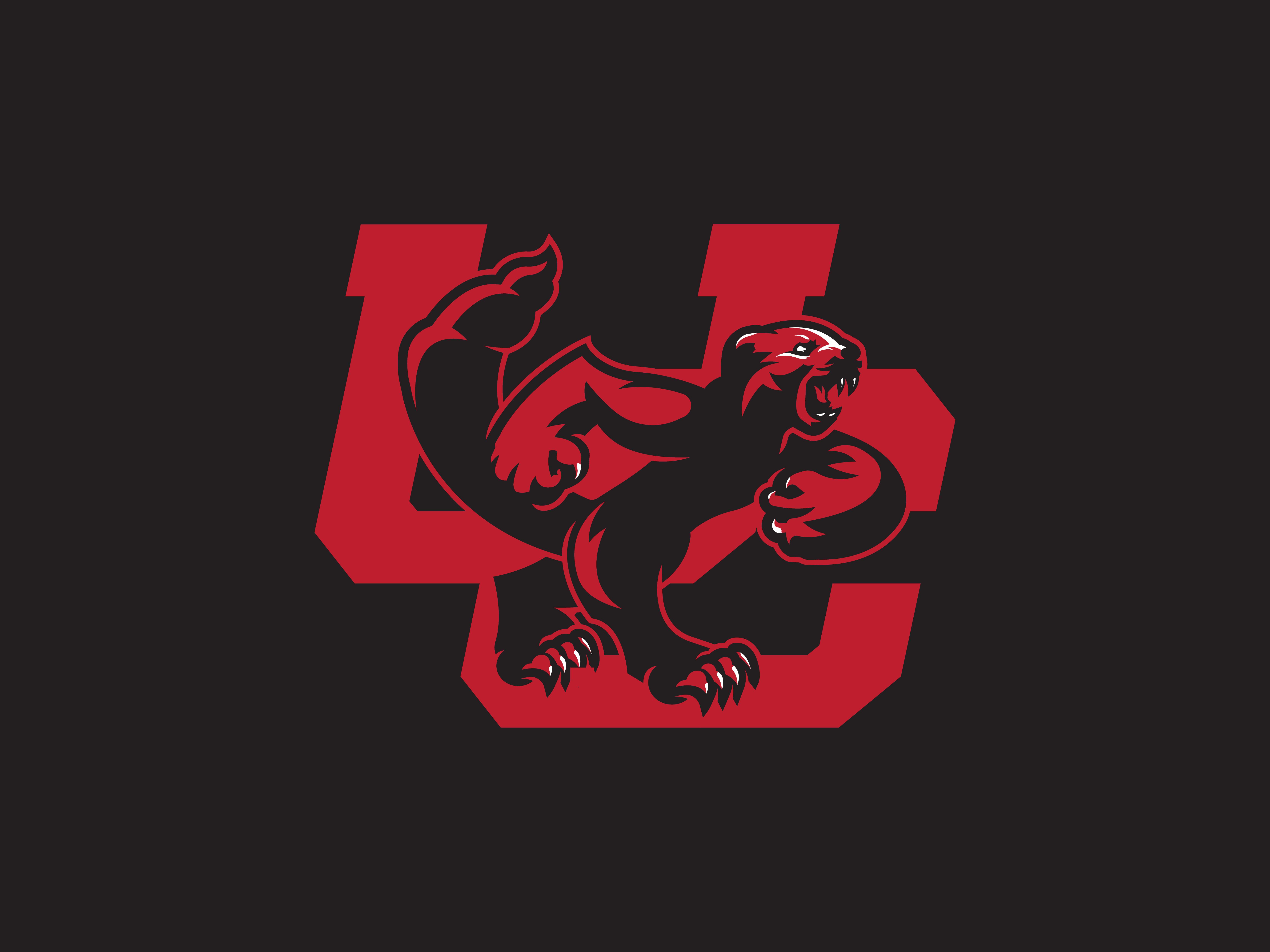 Uc dribbble 05