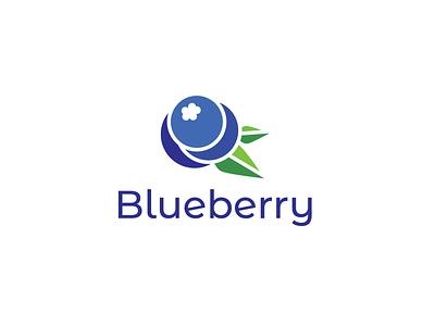 Blueberry logo illustration vector logo graphic design design branding brand identity
