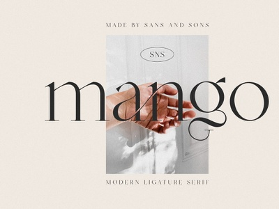 Modern Serif typeface serif font ligature modern serif font