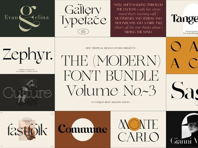 The Modern Font Bundle serif display typeface ligature modern bundle font