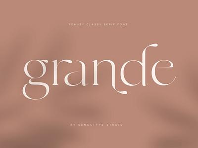 Beauty classy serif sans logo font classic font chic beauty font typeface modern serif display ligature font