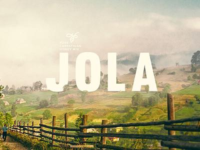 Jola - pure carpathian honey mix