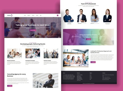TemplateToaster Website Builder | Consult WordPress Theme