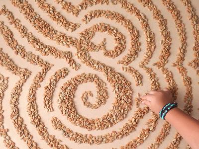 #AtoZoë - S is for Sunflower Seeds sunflower seeds typography atozoë alphabet food