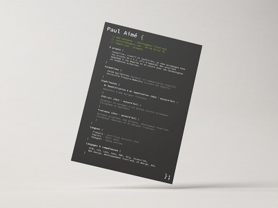 Resume hack code web design pao layout resume design