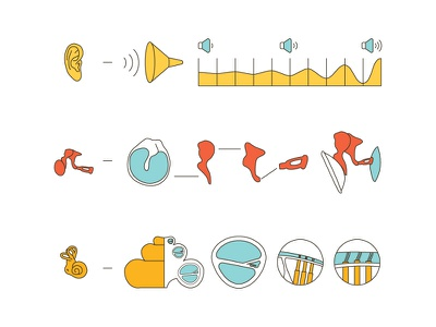 Ear-Function  ear simple info quick
