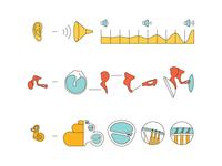 Ear-Function