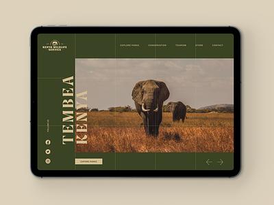 Kenya Wildlife Service Website typography figma africa web design website kenya adventure safari concept ux ui
